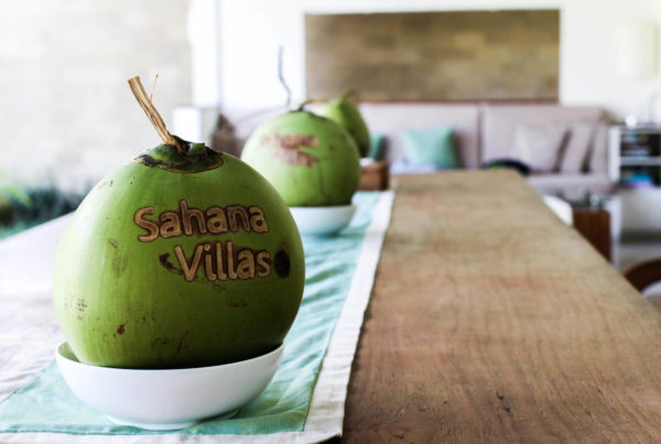 Brinis Fashion Book Sahana Villas In Seminyak